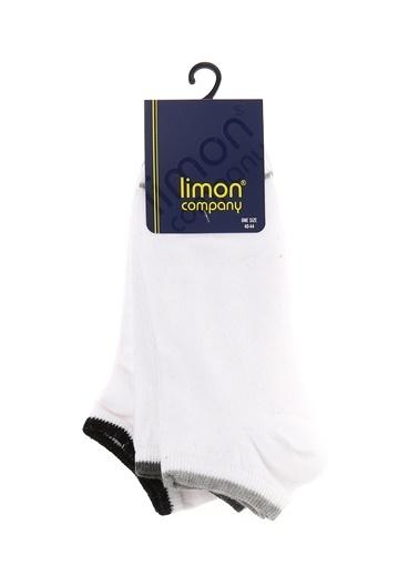 Limon Company Limon Beyaz Erkek Çorap Beyaz